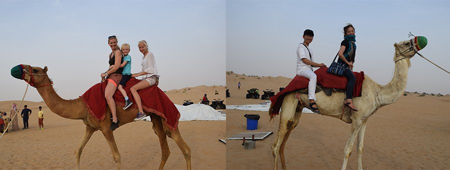 Why Is It Must To Visit Desert Safari When You Go To Dubai