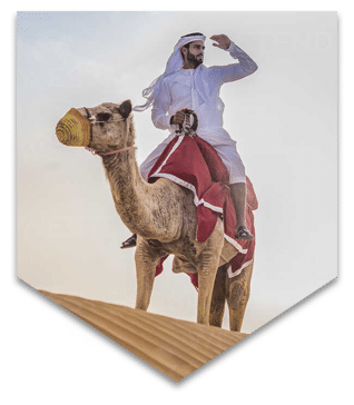Camel ride in Safari trip