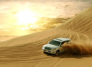 Dune Bashing in Morning Safari